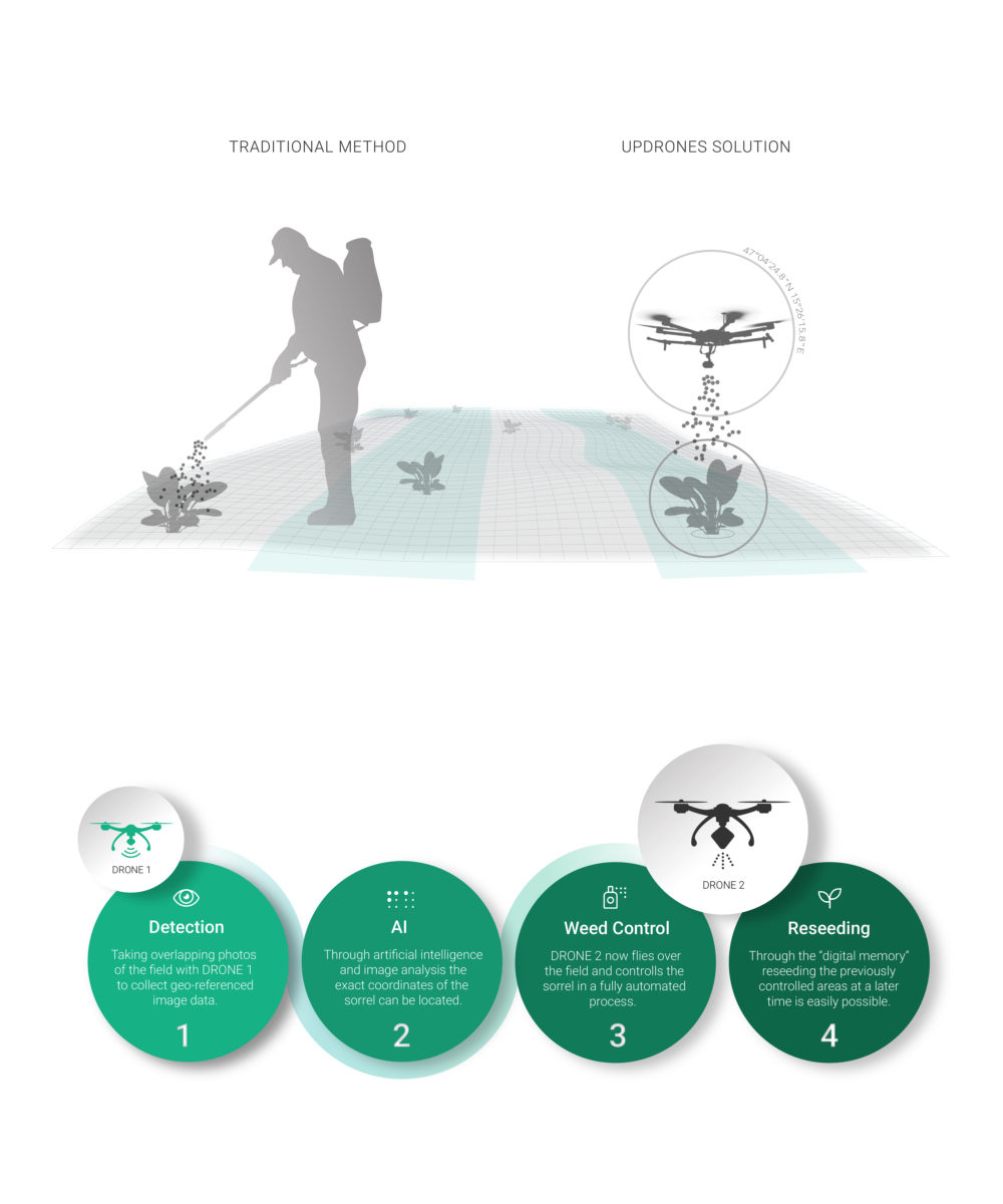 graphic: comparison of manual seeding and with a drone. Explanation of four steps: Detection, AI, Weed Control, Reseeding